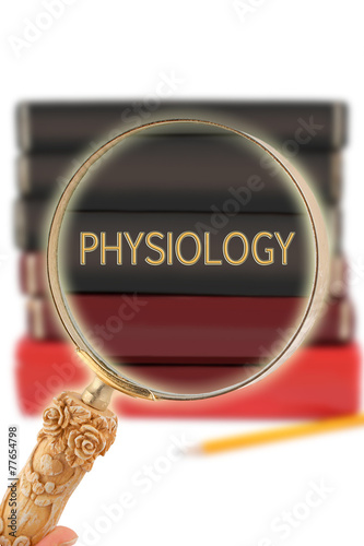 Looking in on education - Physiology - Buy this stock photo