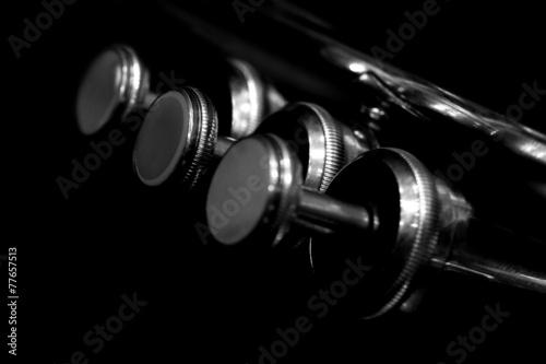 Fotografía Fragment trumpet closeup