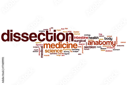 Dissection Word Cloud Buy This Stock Illustration And Explore