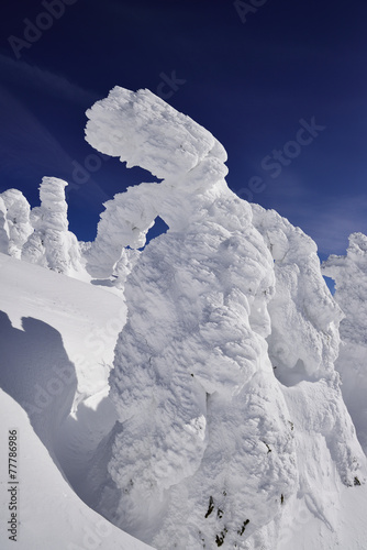 Deurstickers Antarctica アイスモンスター