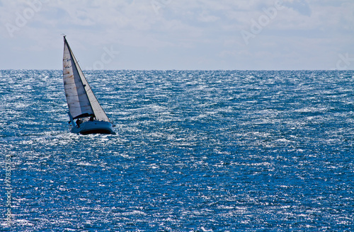 Tuinposter Zeilen sailing with mistral