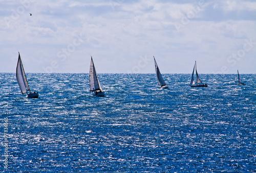 Staande foto Zeilen sailing competition