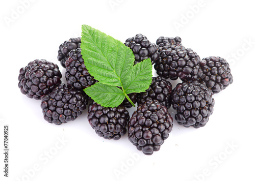 Fotografija  blackberry isolated on white