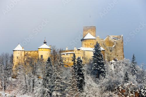 Beautiful view of Niedzica castle, Poland, Europe