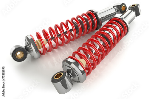 Auto parts. Kit of shock absorbers. Canvas Print