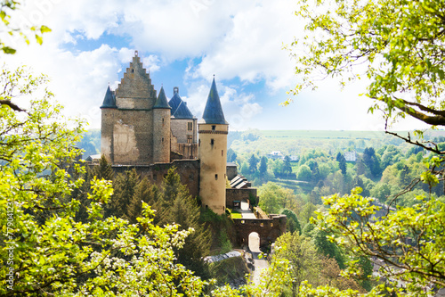 Obraz View of Vianden castle in Luxembourg from the hill - fototapety do salonu