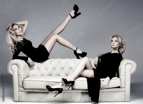 Fotografia, Obraz  Elegant two woman posing.