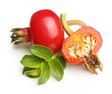 Rose Hip Isolated