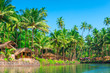 tropical palms and bungalows to relax from the hectic