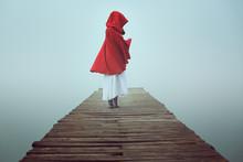 Dark Little Red Riding Hood In...