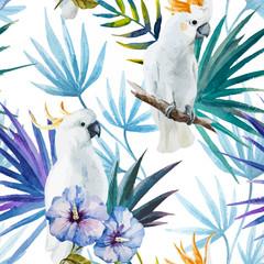 Fototapeta tropikalna z papugą