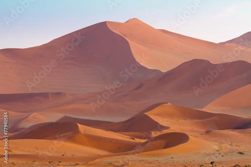 Fotografie, Obraz  Vast sand dunes of Sossusvlei