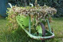 A Green Rustic Wheelbarrow Full Of Colorful Flowers