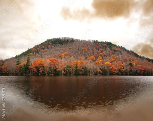 Fotografia, Obraz  Oxbow Lake