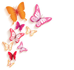 Fototapeta Realistic Colorful Butterflies Isolated for Spring