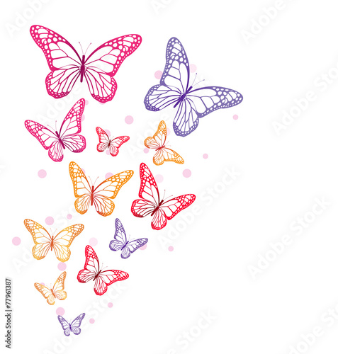 Realistic Colorful Butterflies Isolated for Spring #77961387