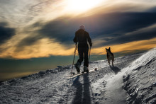 Ski Mountaineering Silhouette, Girl With A Dog