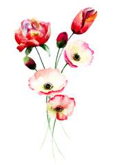 Fototapeta samoprzylepna Poppy and Tulips flowers