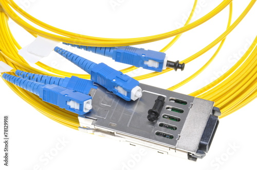 Fotografie, Obraz  Gigabit Interface Converter with fiber cable on white background