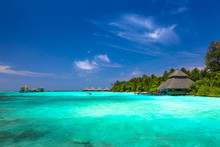 Water Bungalow And Palms Behin...