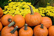 Autumn Outdoor Decor - Pumpkins