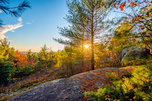 Sun Shines Through Trees In A Rocky Forest