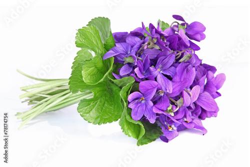 bouquet de violettes Plakat
