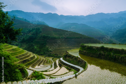 Recess Fitting Rice fields terraced rice field in asia