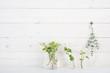 Leinwandbild Motiv 白い壁 植物 アイビー