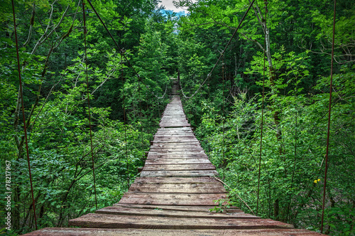 Obraz Suspension bridge - fototapety do salonu