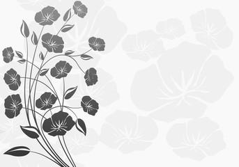 FototapetaDekorasyon çiçekler ( beyaz arka fon )