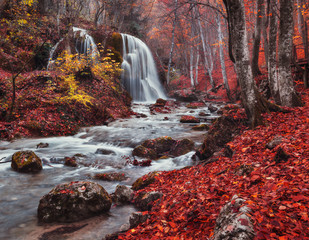 Panel Szklany Las Silver Stream Waterfall (Autumn forest in Crimea)