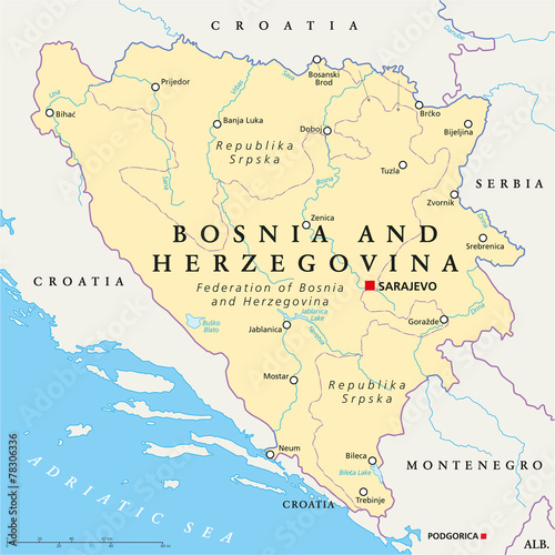 Cuadros en Lienzo Bosnia And Herzegovina Political Map