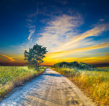 Dirt Road At Sunset On A Summer Day