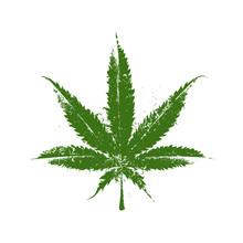 Marijuana Grunge Leaf
