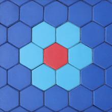 Hexagonal Brick Flooring