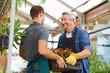 Männer arbeiten als Gärtner im Gartencenter