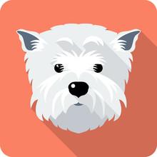 Dog West Highland White Terrie...