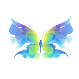 Fototapeta Buterfly - butterfly