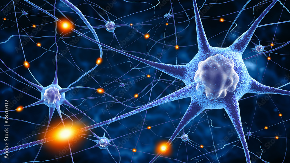 Fototapeta nerve cells