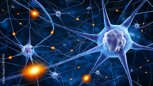 Fotografie, Obraz  nerve cells