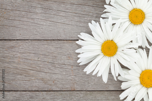 Foto op Canvas Madeliefjes Daisy camomile flowers on wooden background