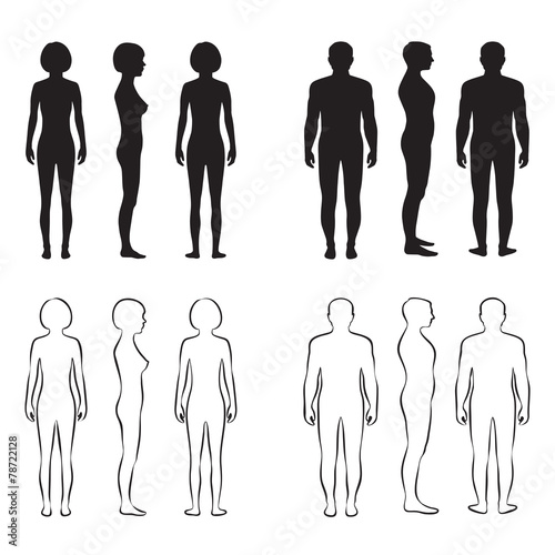 Láminas  human body anatomy,front vector man, woman silhouette