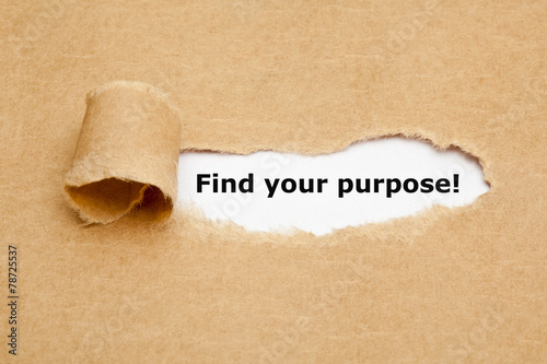Find your purpose Torn Paper Tablou Canvas