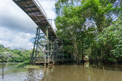 Amazon forest and wooden bridge built for anaconda film Slika na platnu