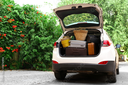 Fotografie, Obraz  Suitcases and bags in trunk of car ready to depart for holidays