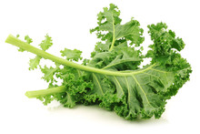 Freshly Harvested  Kale Cabbage Stems On A White Background