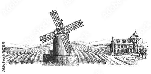 Fotografía  windmill vector logo design template. harvest or village icon.