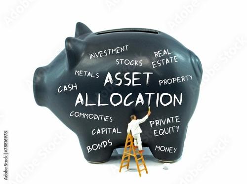 Asset allocation theme piggy bank on a white background Canvas Print