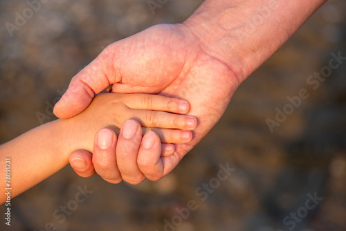 Fotografía  Father's hand lead his child son in summer forest nature